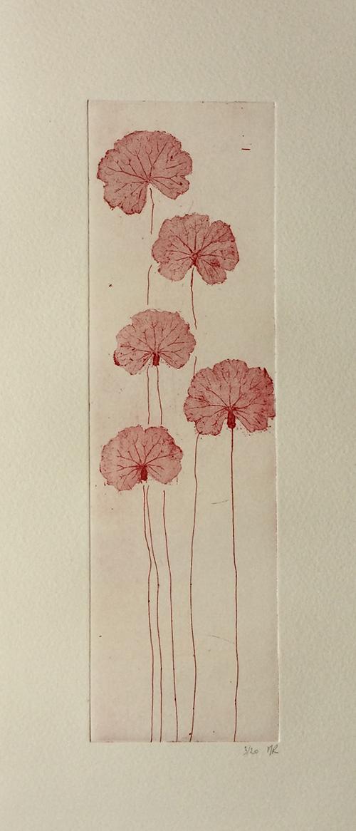 marie-rabault-fleurs